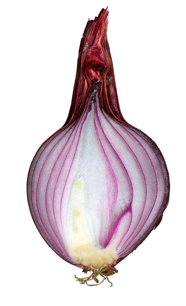 Red onion cut